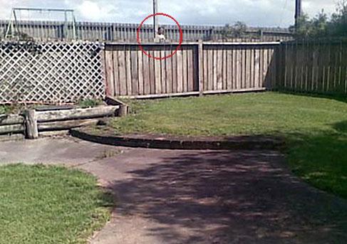 1260007267 nv jpg Bóng ma xuất hiện bí ẩn bên bờ tường rào