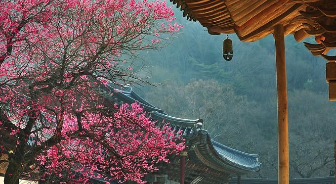 Korea-Hwaeomsa_85.jpg