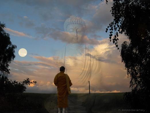 Toàn Nhật Thiền sư - đưa tinh thần Phật giáo xuống cho triều đại Tây Sơn 9