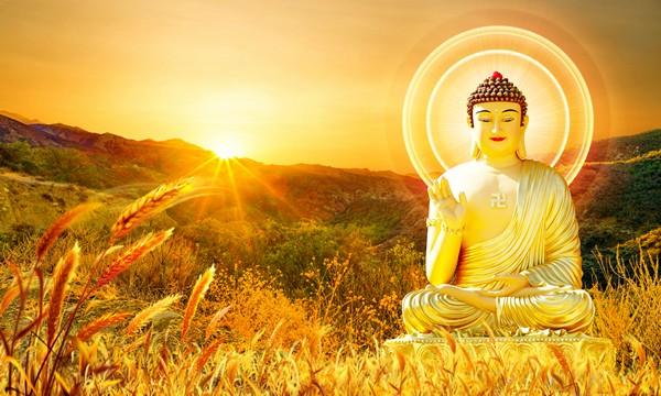 Thiền là sự sống của con người 2