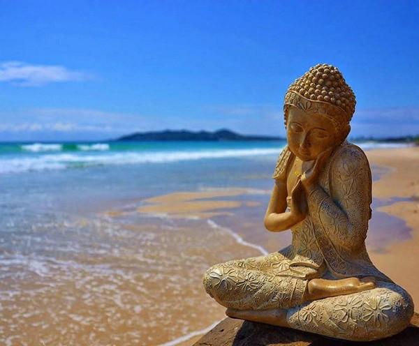 Thiền là sự sống của con người 6