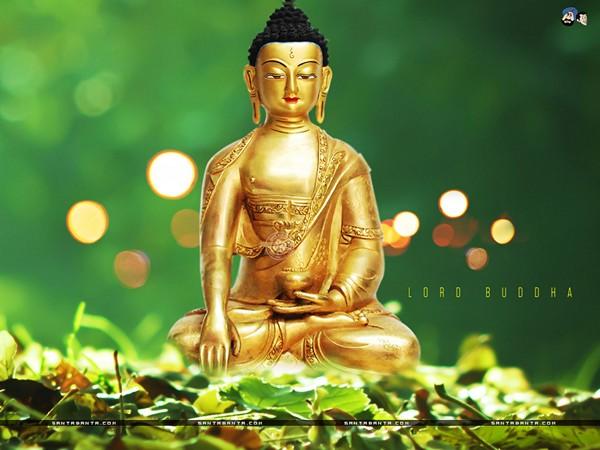 Thiền là sự sống của con người 7